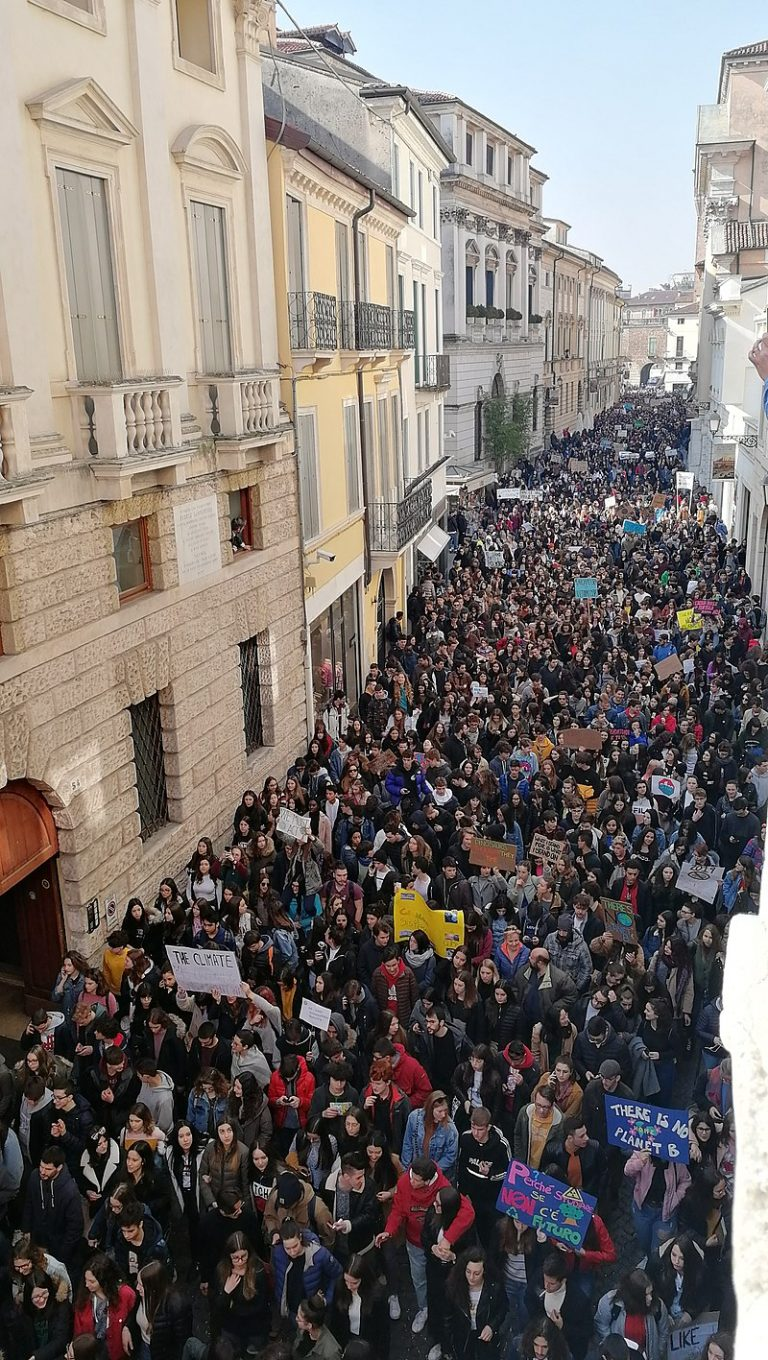 800px Fridays For Future Vicenza