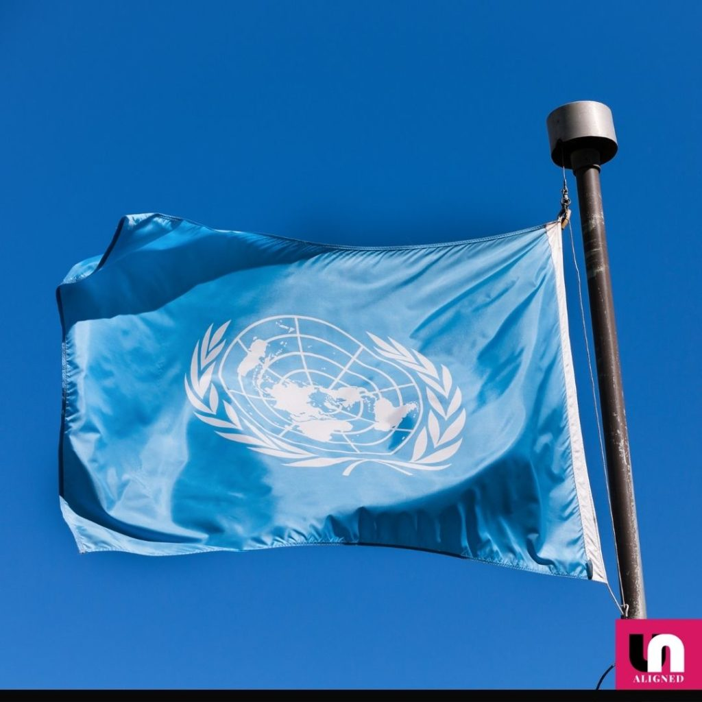 """""""The Future We Want and the UN We Need"""""""