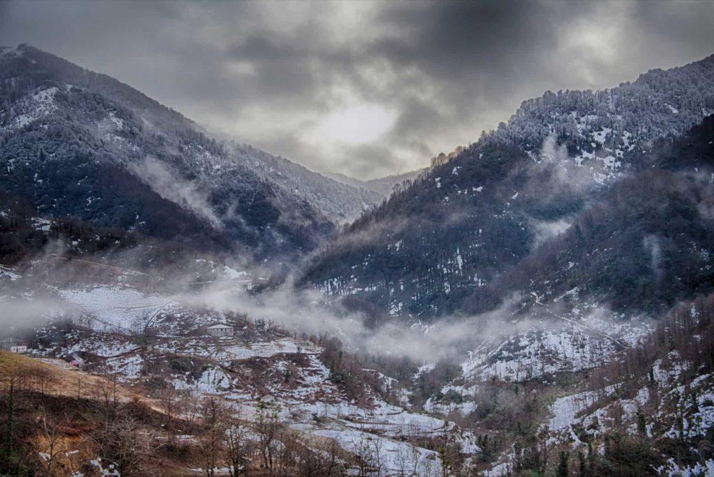 4.2Mtirala National Park. Winter.